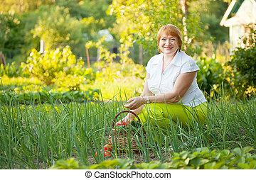 kvinna, lycklig, trädgård, grönsaken