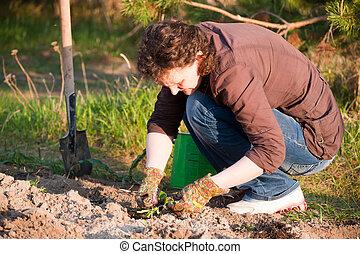 kvinna, trädgård, nätt