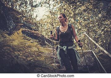 kvinna, vandrare, med, ryggsäck, vandrande, på, den, vild, spåra, in, fjäll, forest.