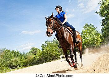 kvinnlig, ryttare, på, vacker, häst, spring, galopp