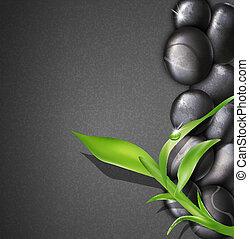 kvist, bakgrund, grön, kurort, bam, stenar
