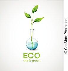 kvist, vektor, ecological., illustration, flask.