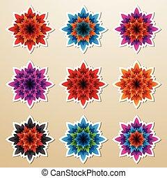 kwiat, śmiały, barwny, kolczasty, ilustracja, płatki, wektor, majchry