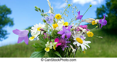 kwiat, bukiet, kwiaty, łąka