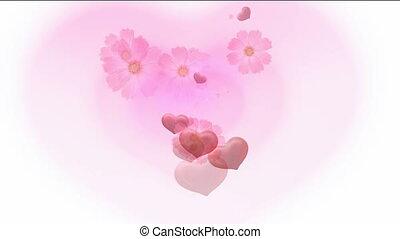kwiat, i, serce