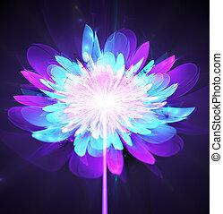 kwiat, jasny, ilustracja, jarzący się, badyl, tło, fractal