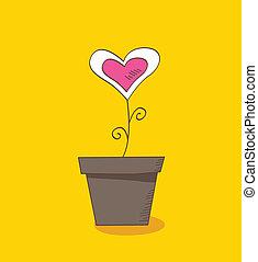 kwiat, miłość