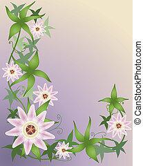 kwiat, namiętność