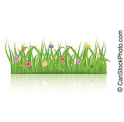 kwiat, odizolowany, zielone tło, biały, trawa