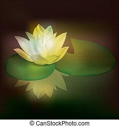 kwiatowy, abstrakcyjny, ilustracja