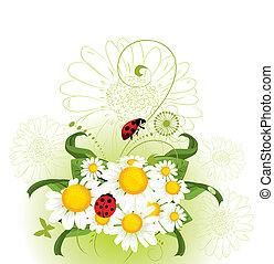 kwiatowy, chamomil, projektować