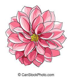 kwiatowy, ilustracja