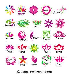 kwiatowy, logos, wektor, zbiór, wielobarwny