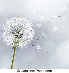 kwiatowy, modny, tło, z, kwiat, mniszek lekarski