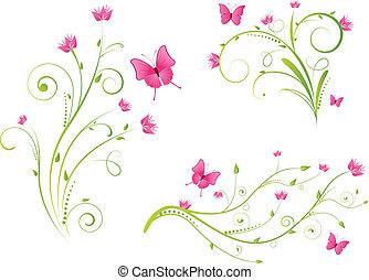 kwiatowy, motyle, elementy, komplet