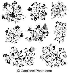 kwiatowy, motyle, wystawiany zamiar