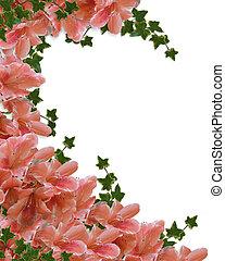 kwiatowy, różowy, brzeg, azalie