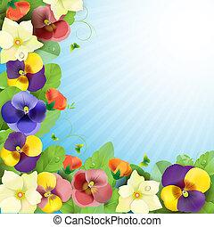kwiatowy, tło, barwny, bratki