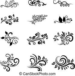 kwiatowy, wektor, zaprojektujcie elementy, calligraphic