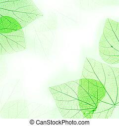 kwiatowy, zielone listowie, brzeg