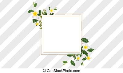 kwiaty, ładny, pasy, projektować, żółty, biały, brzeg, szary