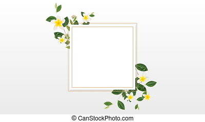 kwiaty, ładny, projektować, biały, brzeg, żółty