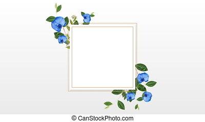 kwiaty, ładny, projektować, biały, brzeg, błękitny