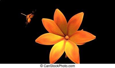 kwiaty, żółty