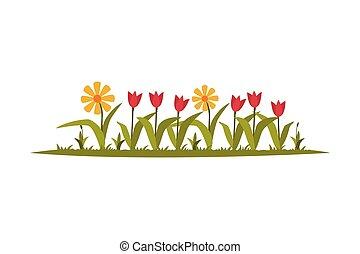 kwiaty, biały, flowerbed, płaski, styl, wektor, rozwój, ...
