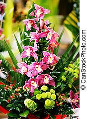 kwiaty, grono
