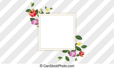 kwiaty, różny, ładny, projektować, brzeg