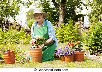 kwiaty, starsza kobieta, ogród