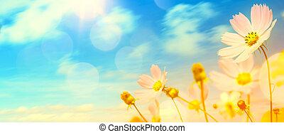 kwiaty, sztuka, lato, ogród, piękny