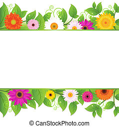 kwiaty, tło