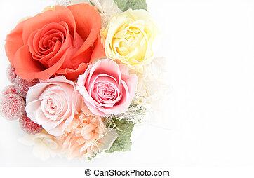 kwiaty, utrzymany