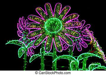 kwiaty, zbudowanie, lampy, oświetlany, barwny