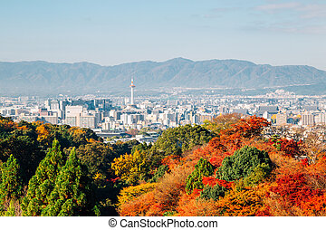 Kyoto city view with autumn maple tree in Japan