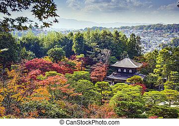 kyoto, follaje, otoño