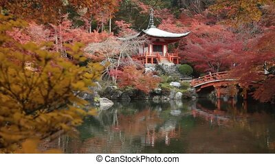Autumn season,The leave change color of red in Temple japan