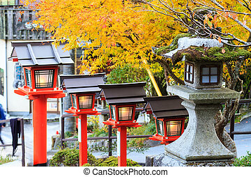 Autumn Japanese garden with maple - Kyoto, Japan - November...