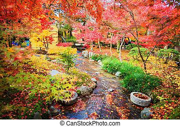 Kyoto, Japan - November 26, 2013: Autumn Japanese garden with maple