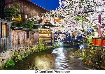 Kyoto, Japan at the Shirakawa River during the spring cherry blosson season.