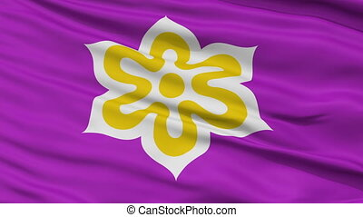 Kyoto Prefecture Close Up Flag - Flag of Kyoto Prefecture,...