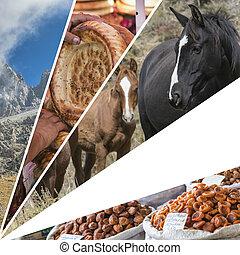 Kyrgyzstan,  (my,  collage, viaje,  photos),  -, Plano de fondo, imágenes