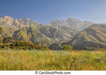 Kyrgyzstan Tien-Shan - Scenic peaks in mountain range Tien-...