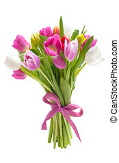 kytice, o, pramen, tulipán, květiny