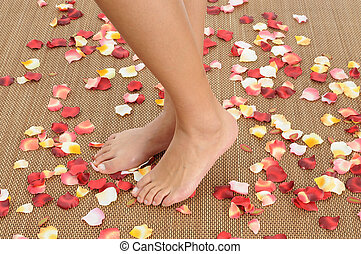 lábak, alapján, egy, woman.
