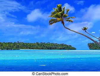 lábfej, sziget, egy