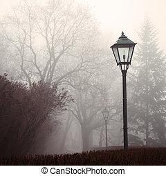 lámpara de calle, y, bosque, parque, en, niebla