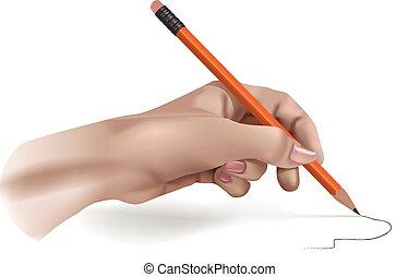 lápis, vetorial, mão